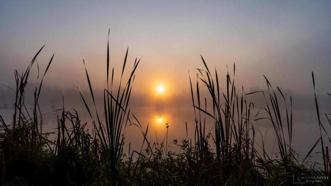 Sonnenaufgang am Neckarursprung